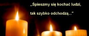 znicz3